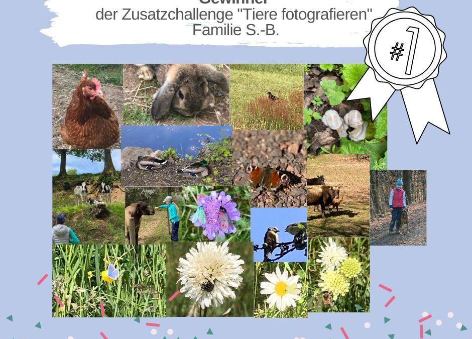KAS Familien Challenge 2020: Die Gewinner der Zusatz-Challenges stehen fest!