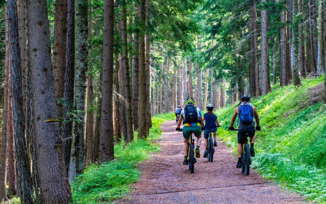 Kultur, Natur, Entspannung: E-Bike-Wochen durch das liebliche Taubertal – Anmeldungen noch bis 16.07. 2021 möglich