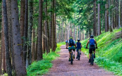 Kultur, Natur, Entspannung: E-Bike-Wochen durch das liebliche Taubertal